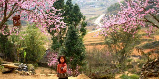 Discover Ha Giang Loop
