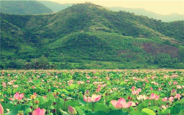 Quan Son Lake - Hanoi